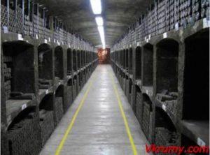 Винные погреба Массандры