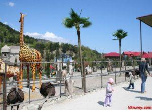 Зоопарк Сказка